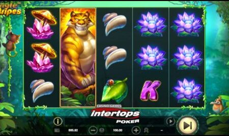 Intertops Poker running week-long Bitcoin bonus campaign